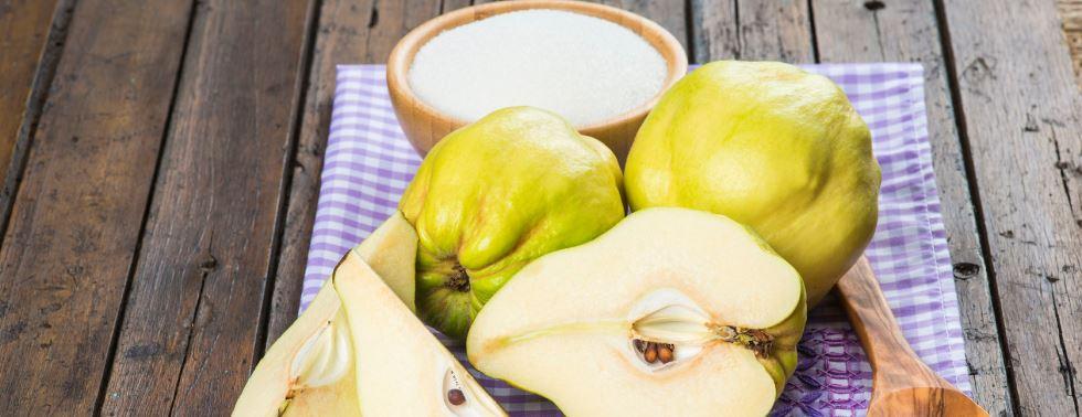 El membrillo rbol fruto recolecci n y conservaci n - Membrillo arbol ...